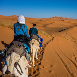A couple trekking Sahara desert on a camel during one of their best dates.
