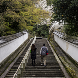 A couple going up a flight of stairs during one of their best dates in one of the temples of Kyoto, Japan.